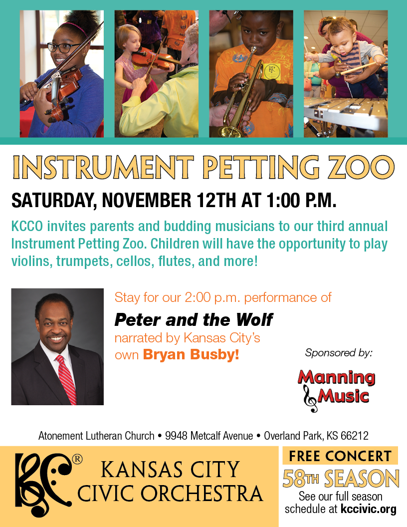 Instrument Petting Zoo Flyer